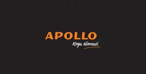 Apollo raamatupood