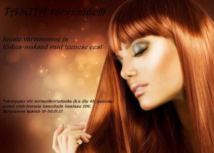 a-ilustuudio_pilt
